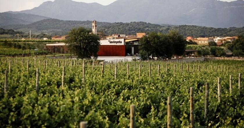 Wine tourism activities in La Vinyeta in Mollet de Peralada