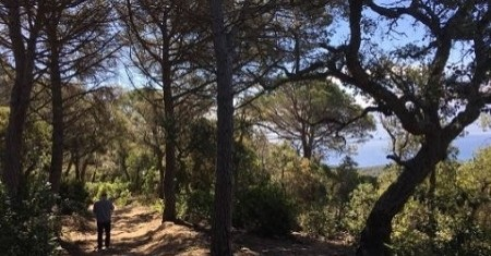 Baths in the forest in Tossa de Mar