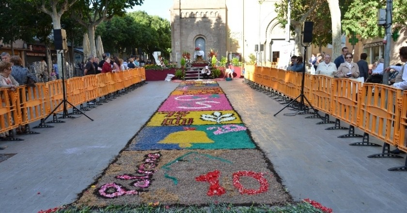 Carpet of flowers and received from the Llama del Canigó in Sant Feliu de Llobregat