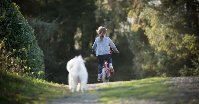 Conoce los caminos de Alatafulla en bicicleta