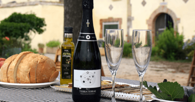 Discover the flowering of the vineyard to the Covides winery