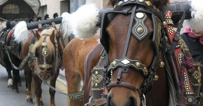 Festa dels Tres Tombs a Vilanova i la Geltrú