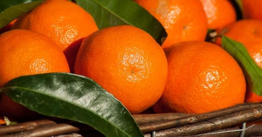 Jornadas gastronómicas de la clementina de Alcanar