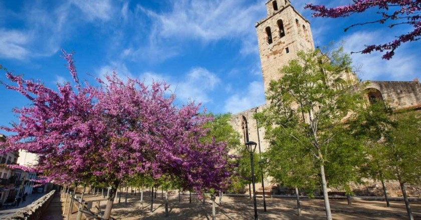 Paseos guiados por los parques y jardines de Sant Cugat del Vallès