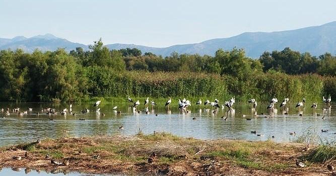 Visites printanières dans les espaces naturels de l'Empordà