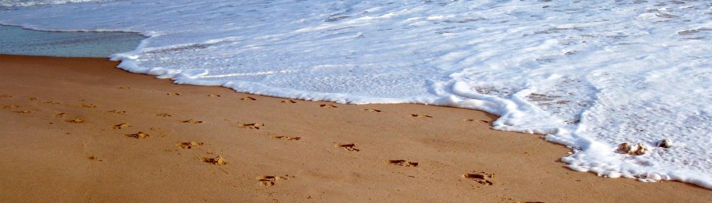 Calas y playas de Sant Feliu de Guíxols