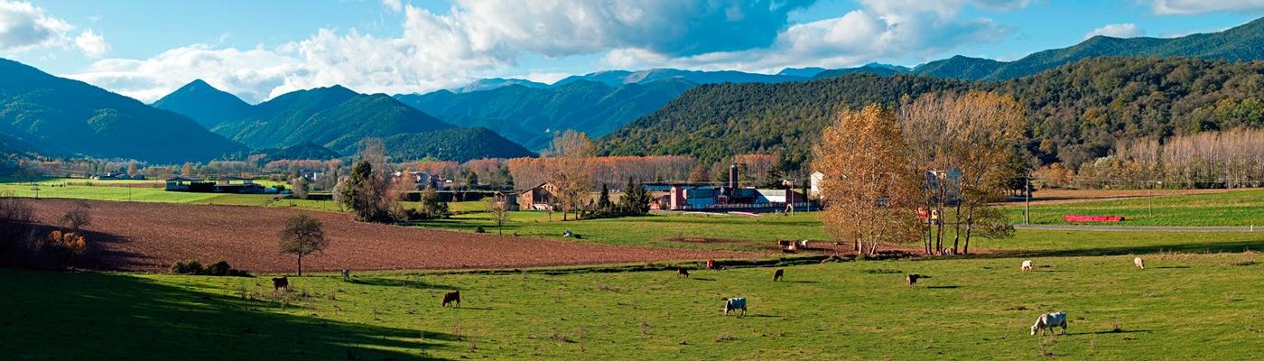La Vall de Bianya, la nature et le patrimoine dans la Garrotxa