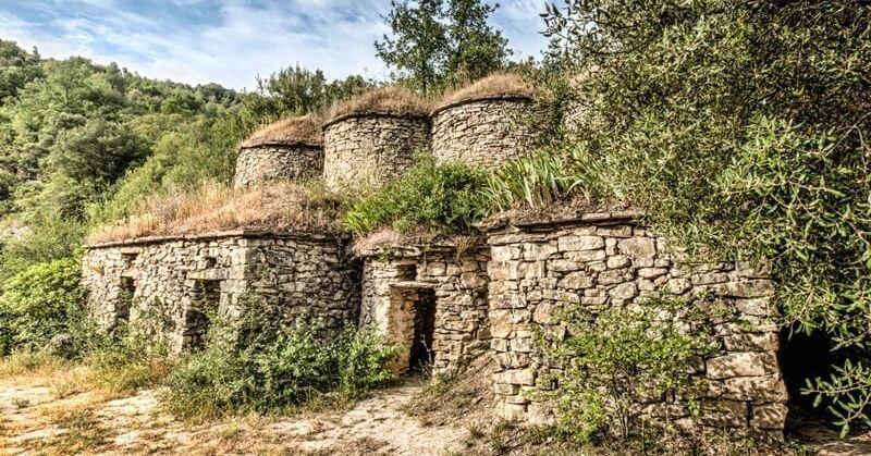 Tinas entre viñedos en el Pont de Vilomara i Rocafort