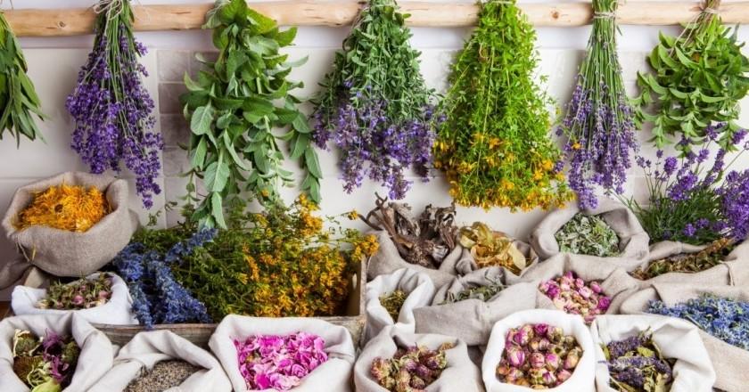 Cosmètica natural i plantes remeieres a Catalunya