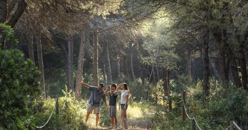Find your summer in Baix Llobregat
