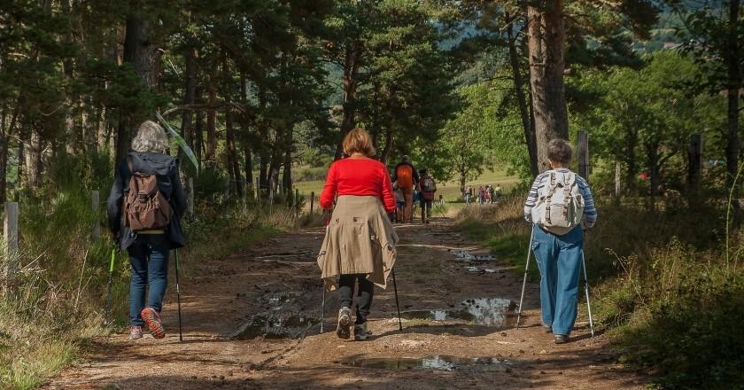 Naturaleza y descubrimiento: mayores de 60 años