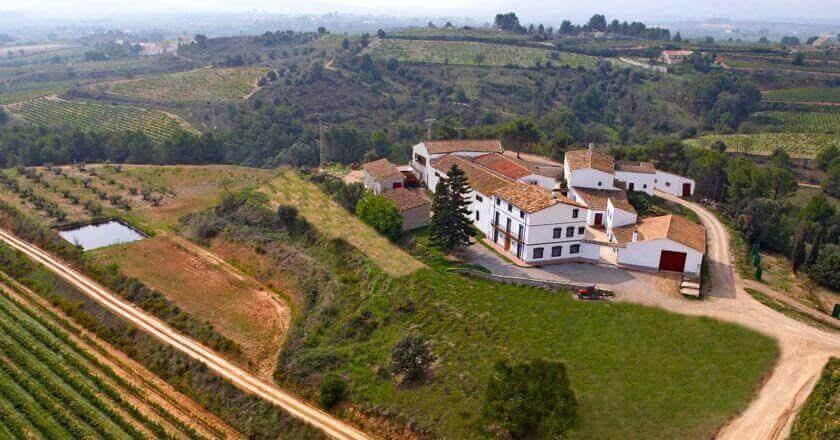 Visita a la bodega con degustación y cata de vinos