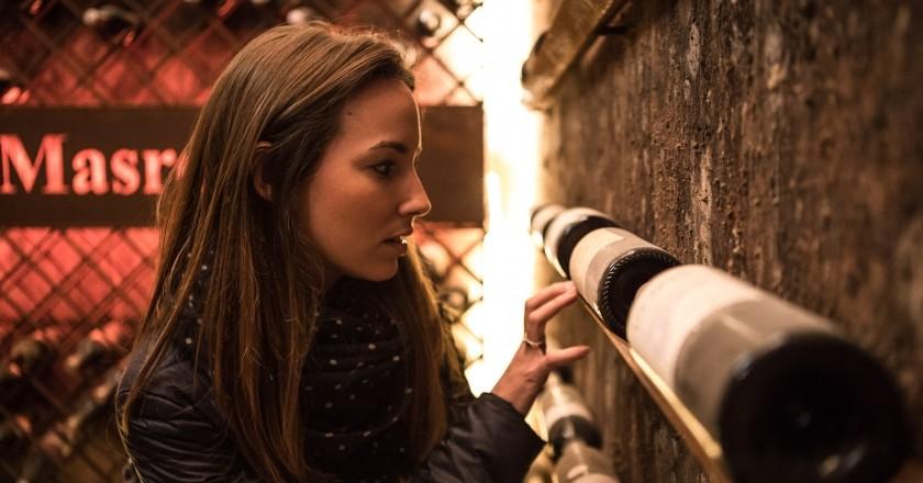 Visita a la bodega + cata de vinos