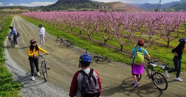 Ruta en bicicleta per la floració dels arbres fruiters