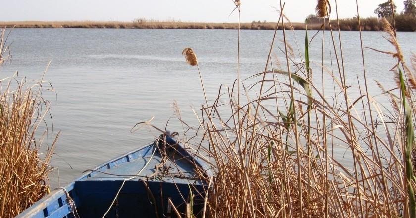 Allotjament més experiència al delta de l'Ebre