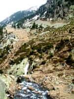 Camí Pont del Cremal