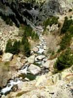 Camí cap a la Vall de Núria