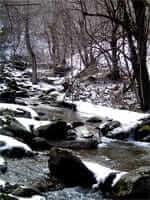 Esterri d'Àneu (nevat)