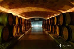 Celler Les Graveres (DO Costers del Segre)