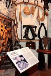 Ruta de la pell per Igualada (Museu del Traginer Cal Merdetes Igualada)