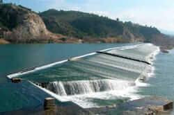 Per l'interior del riu Ebre (assut de xerta)