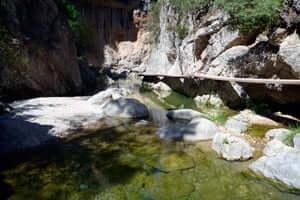 Parc Natural de Els Ports de Beseit (Senderisme Ports Beseit Els Estrets)