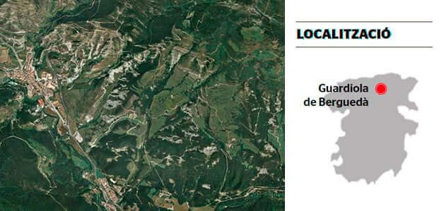 Looking for mushrooms in the Berguedà and Solsonès (Broca Forests)