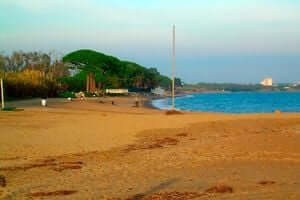 Itinerary Miró (Miró Beach Of Mont Roig Route)