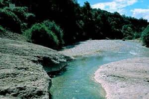 La Ribera Salada (Ribera Salada Puente Del Clop)