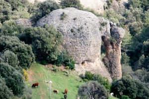 The Ribera Salada (Ribera Salada Roca Codro Elephant)