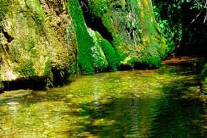 Culture and adventure in the Rialb reservoir (Fuente Viva of Peramola Embalse Rialb)