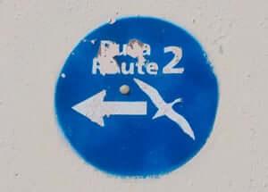 Ruta del Corb marí per Calella (Ruta Corb Mari)