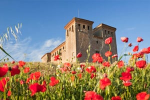 r148-castle-of-Montcortes-la-segarra-sio