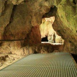 Visita al Parc de les coves de Serinyà i al Parc de la Draga