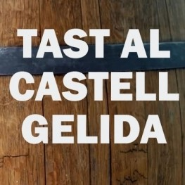 Tasting at Gelida Castle with a visit to the Can Pasqual Farmhouse