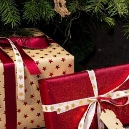 Actos de Navidad y Fiesta Mayor de Invierno del Pla de Santa…