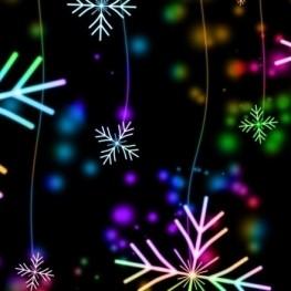 Activitats de Nadal a Riudarenes