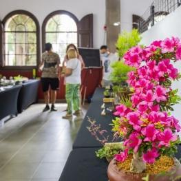 Arenys de Flors