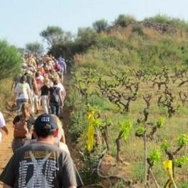 Promenade des Trois Villages de Masnou