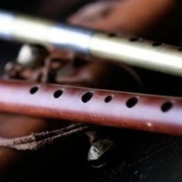 Cançons interpretades pels Randellaires al Museu Etnogràfic…