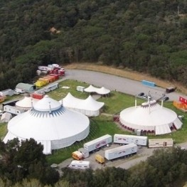 Circus and nature: a day of activities for schoolchildren