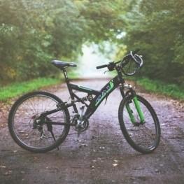 Dia de la Bicicleta a Les Cases d'Alcanar