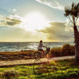 Journée mondiale de vélos