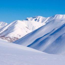 Journée mondiale de la neige