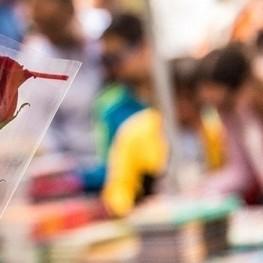 Journée de Sant Jordi à Viladecans