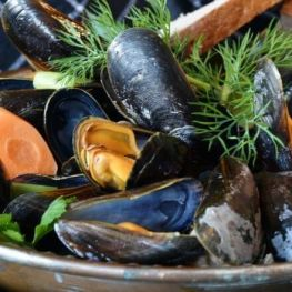 Week of the Mussel of the Ebro Delta