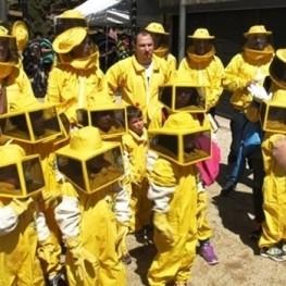 Fes d'apicultor per un dia a Viladecans