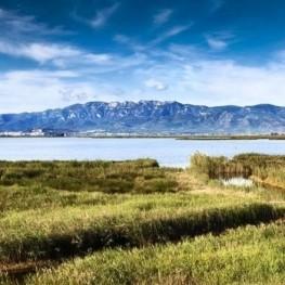 Festival d'écotourisme de Delta del Ebro