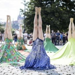 Festival de dansa Sismògraf a Olot
