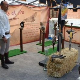 Medieval Fair and Firacem of New Martorell